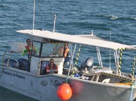 Vessel-Seafarer-2
